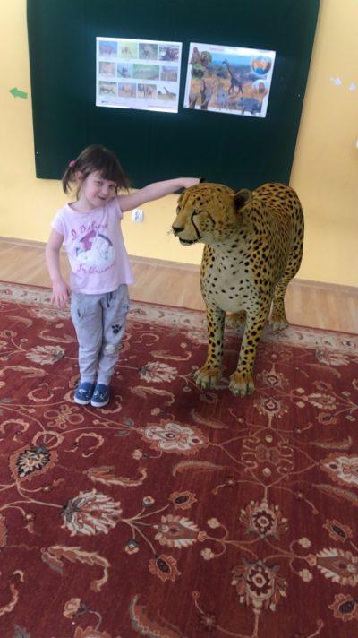 Spotkanie zezwierzętami zsawanny