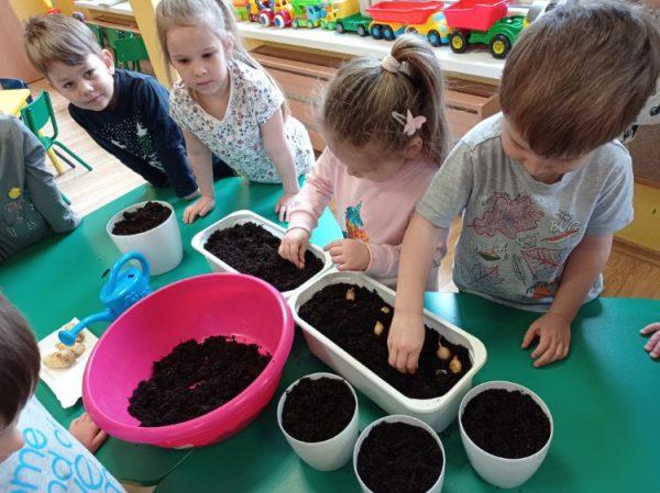 Zakładamy zielony ogródek