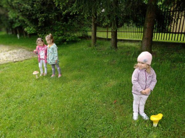 Leśna przygoda - zajęcia interaktywne